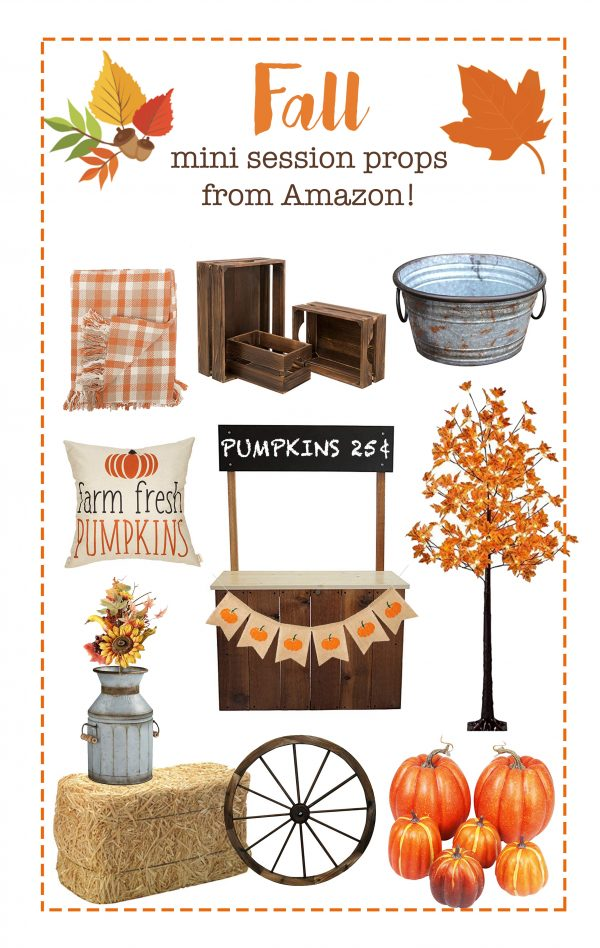 Fall Mini Session Props from Amazon!