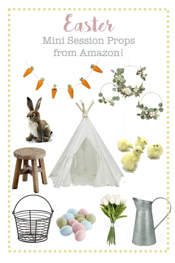 Easter Mini Session Props from Amazon!